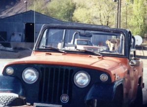 Gunner behind the wheel of my 1968 Jeepster Commando